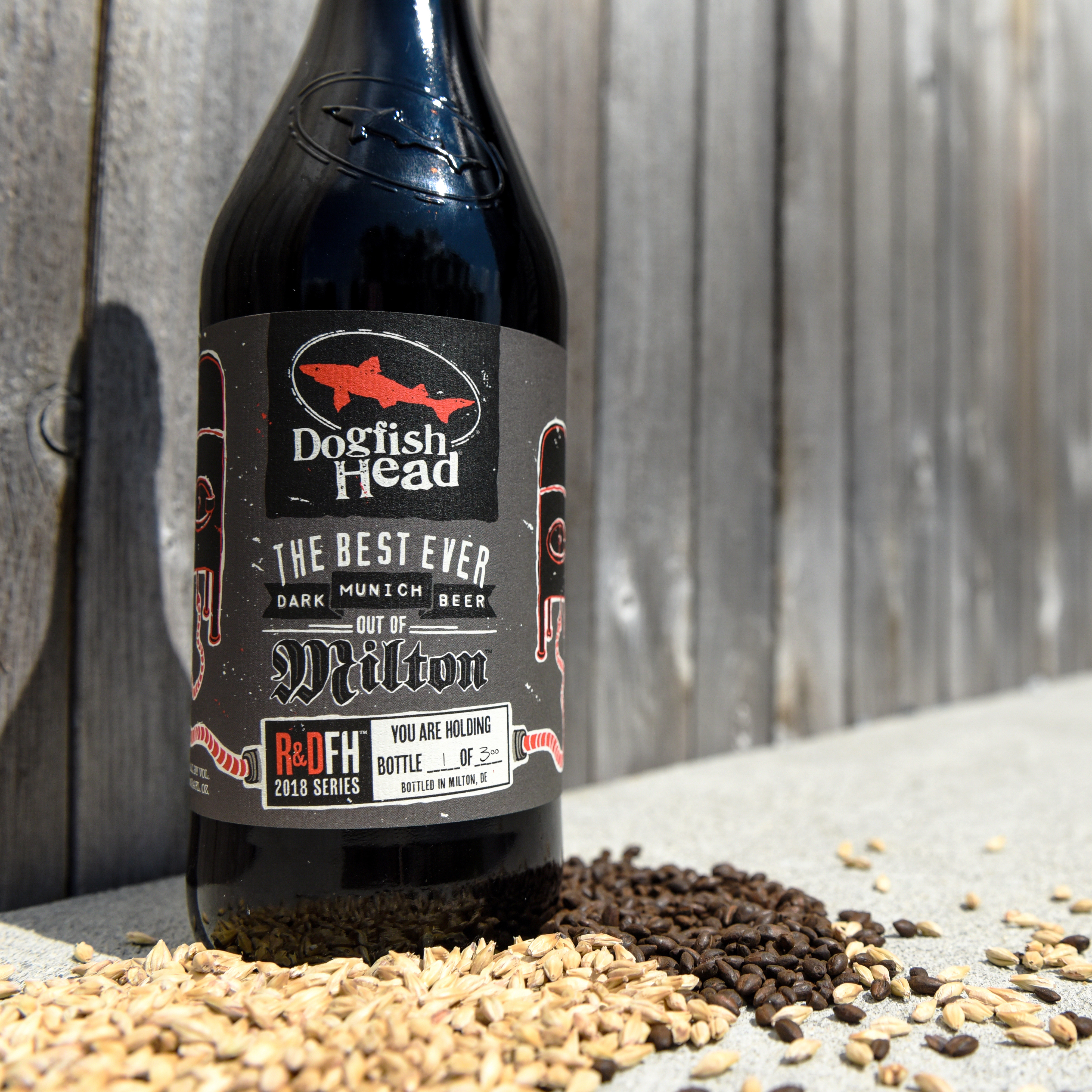 the best ever dark munich beer out of milton limited bottle release