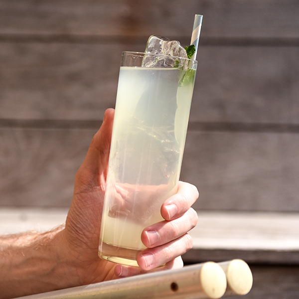 Analog Vodka Coconut Cooler
