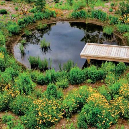 Delaware Botanical Learning Garden