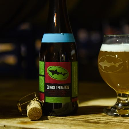 Dogfish Head Overt Operation Wild Ale bottle