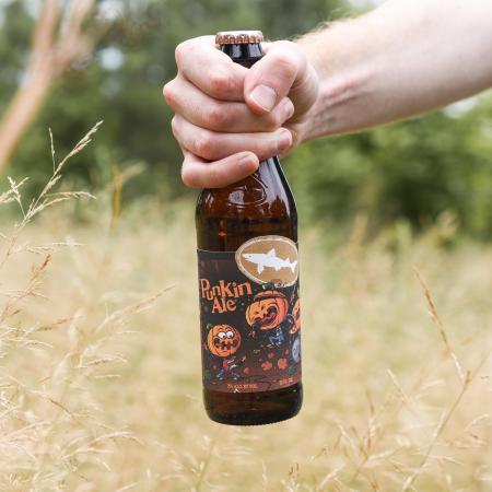 2019 Punkin Ale packaging in a field