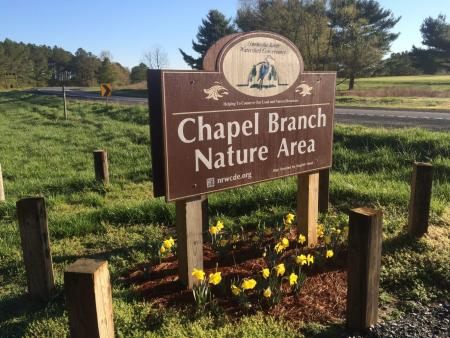 Sustainability Day at Chapel Branch Nature Area