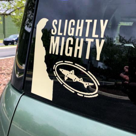 SlightlyMighty-Decal-2.jpg